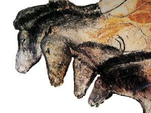 Images of horses from the Chauvet Caves