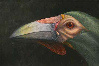 Spectral Avian