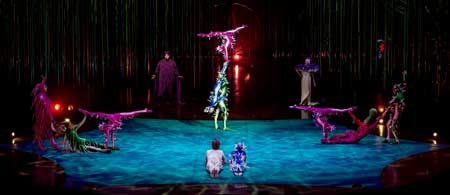 Acrobats from 'Varekai'